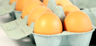 Egg boxes, cartons and packaging